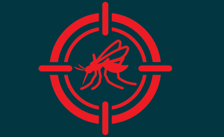 Prevent Mosquito Illness