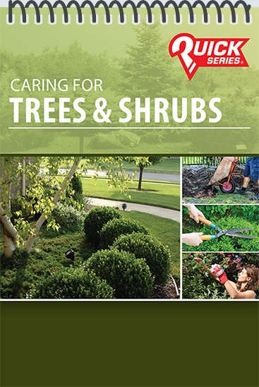 Pocket Guide cover - Caring for Trees & Shrubs